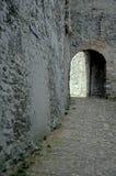 Castle- Rhine valley, Germany stock photo