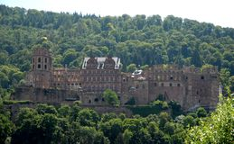 Castle rising from green forest to Heidelberg in Germany Stock Image