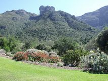 Castle rock seen from Kirstenbosch Stock Photo