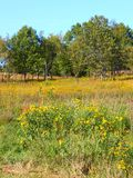 Castle Rock State Park Prairie Royalty Free Stock Image