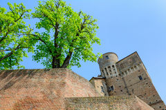 Castle of Roddi Stock Photography