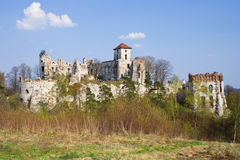 Castle Rudno - Poland. Stock Photos