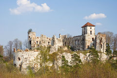 Castle Rudno - Poland. Stock Images