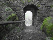 Castle, Ruin, Output, Moss, Green Stock Photo