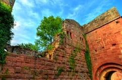 Castle ruin Wildenberg Stock Images