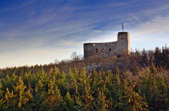 Castle ruins in the forest Royalty Free Stock Photo
