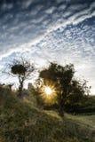 Castle ruins landscape at sunrise with inspirational sunburst be Royalty Free Stock Photo