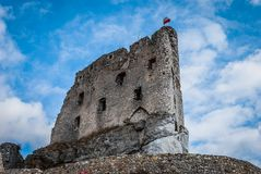 Castle ruins. The ruins of a medieval castle Stock Photography