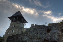Castle ruins Nevitsky Transcarpathia Ukraine Stock Photos