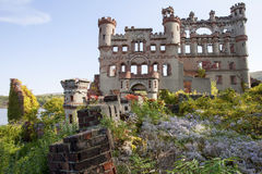 Castle Ruins and Overgrown Gardens. Bannerman castle armory ruins with overgrown garden flowers Stock Image