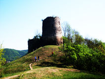 Castle Ruins from Romania Royalty Free Stock Photography