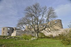 Castle ruins and a tree Royalty Free Stock Photos