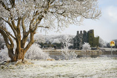 Castle ruins and trees covered by frost Stock Images