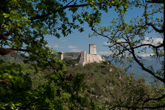 Castle Ruins  through trees Royalty Free Stock Image