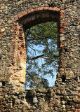 Castle ruins window. With green trees background stock photos