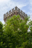Castle's tower hidden in the woods Royalty Free Stock Photo
