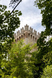 Castle's tower hidden in the woods Stock Photography