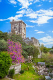 Castle of Saint Peter in Bodrum Stock Images