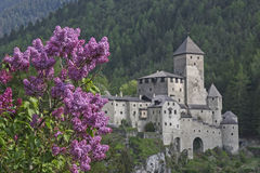 Castle Sand in Taufers. With blooming lilac bushes royalty free stock photos
