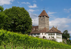 Castle, Spiez. Beautiful castle, blue summer sky and vineyard. City of Spiez, canton Bern, Switzerland Royalty Free Stock Images