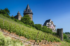 Castle Stahleck in the vineyards Stock Image