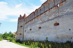 Castle in Stare Selo Royalty Free Stock Photos