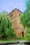 Castle surounded by the willows in Drohobych Stock Images