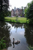 Castle and swan. Historic castle with a black swan in the pond Royalty Free Stock Photography