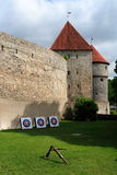 Castle in Tallin Royalty Free Stock Photos