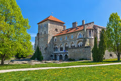 Castle of Tata in Hungary. Royalty Free Stock Images