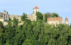 Castle Tenczyn Royalty Free Stock Photos