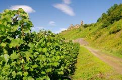 Castle Thurant Royalty Free Stock Photo