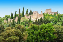 Castle of Tomar Royalty Free Stock Images