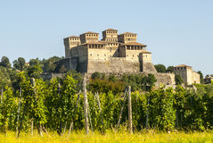 Castle of Torrechiara and vineyard Royalty Free Stock Photos