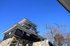 Castle tower of Hamamatsu castle in Hamamatsu, Shizuoka Royalty Free Stock Photo