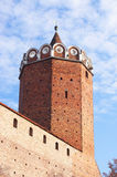 Castle tower. The oktagonal tower of Leczyca medieval castle, Poland Stock Photography
