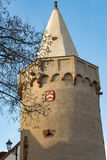 Castle tower on river. Seliegnstadt Royalty Free Stock Photos