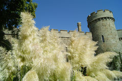 Castle tower. The tower and the walls of the Vorontsov Palace are beside the inflorescences of ornamental golden grass in the palace garden stock images