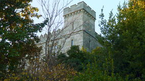 The castle tower among the trees in the forest.  stock footage