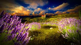 Castle towering 9ver lavender fields. Lavender fields landscape in the evening Stock Photography