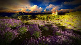 Castle towering 9ver lavender fields. Lavender fields landscape in the evening Stock Photos