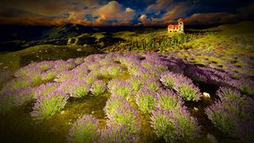 Castle towering 9ver lavender fields. Lavender fields landscape in the evening Stock Image