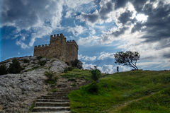 Castle and tree on top of a hill Royalty Free Stock Image