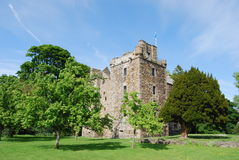 Castle Among Trees Royalty Free Stock Images