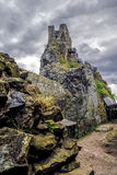 Castle Trosky Royalty Free Stock Photography