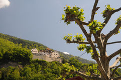 Castle in Vaduz Royalty Free Stock Image