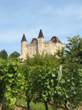 Castle of Varey, Ain, France. Vineyard in front of the historical manor of Varey, Ain, France Royalty Free Stock Images