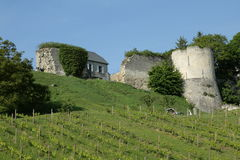 Castle and vine in Aisne, France. Castle and vine at Coucy le Chateau in Aisne, Picardie in north of France stock image