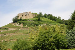 Castle on a vineyard Stock Photo