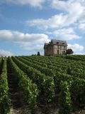 Castle in Vineyard. Champagne region, France Royalty Free Stock Photos